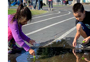 Students testing water